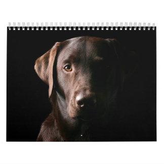 Chocolate Labrador Calendar 2010