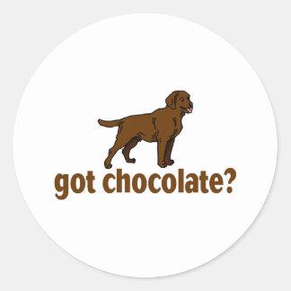Chocolate Labrador Classic Round Sticker