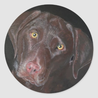 Chocolate Labrador Classic Round Sticker