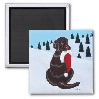 Chocolate Labrador con el copo de nieve del gorra  Imán Cuadrado