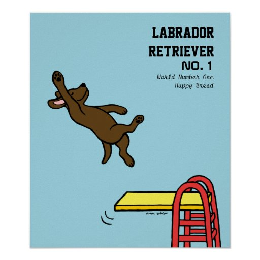 Chocolate Labrador Diving Cartoon Poster