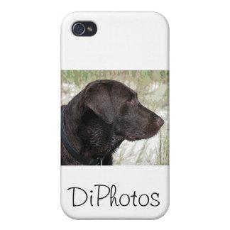 Chocolate Labrador Dog iPhone 4/4S Covers