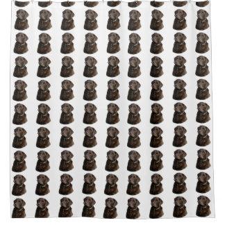 Chocolate Labrador dog pattern Shower Curtain
