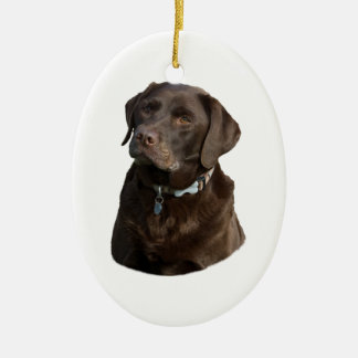 Chocolate Labrador dog photo portrait Ceramic Ornament