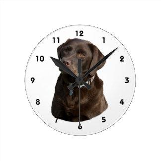 Chocolate Labrador dog photo portrait Round Wallclock