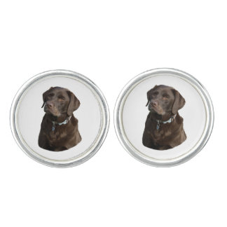 Chocolate Labrador dog photo portrait Cufflinks