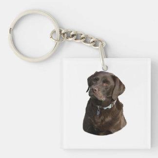 Chocolate Labrador dog photo portrait Double-Sided Square Acrylic Keychain