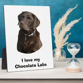 Chocolate Labrador dog photo portrait Plaque