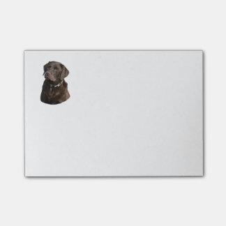 Chocolate Labrador dog photo portrait Post-it® Notes
