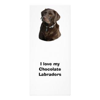 Chocolate Labrador dog photo portrait Customized Rack Card