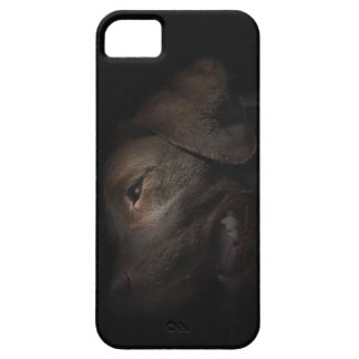 Chocolate Labrador in Darkness iPhone SE/5/5s Case