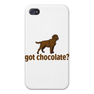 Chocolate Labrador iPhone 4/4S Case