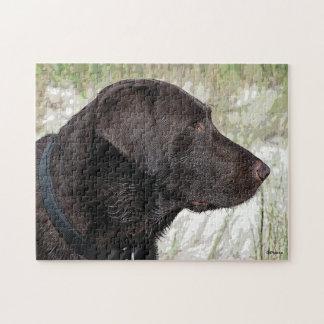 Chocolate Labrador Jigsaw Puzzle