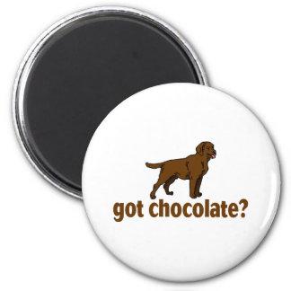 Chocolate Labrador Magnet
