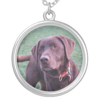 chocolate labrador necklace