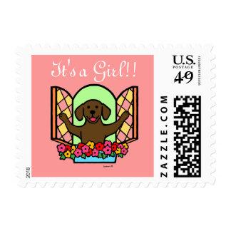 Chocolate Labrador New Born Baby Stamp