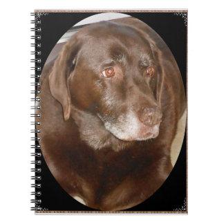 Chocolate Labrador Notebook