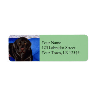 Chocolate Labrador on the Wicker Couch Label