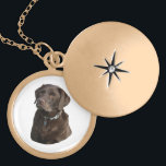 """Chocolate Labrador photo portrait Gold Finish Necklace<br><div class=""""desc"""">A beautiful cute brown chocolate Labrador dog photo portrait, for animal and pet lovers and dog owners, easily change the background color from over 200 customizable colors, and personalize with your own text, for your working dog, or kennel. You can even change the photo for one of your own pooch....</div>"""