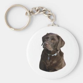 Chocolate Labrador photo portrait Basic Round Button Keychain