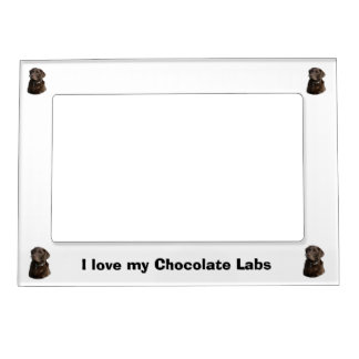Chocolate Labrador photo portrait Magnetic Frame