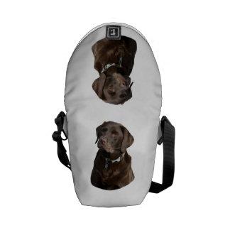 Chocolate Labrador photo portrait Messenger Bags