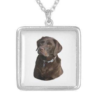 Chocolate Labrador photo portrait Pendants