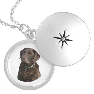 Chocolate Labrador photo portrait Round Locket Necklace