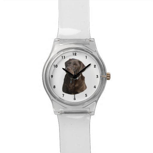 Chocolate Labrador photo portrait Wristwatches