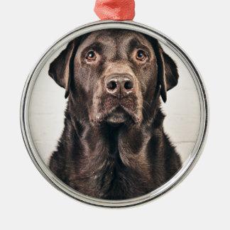 Chocolate Labrador Portrait Round Metal Christmas Ornament