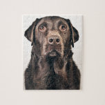 Chocolate Labrador Portrait Puzzle