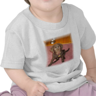 Chocolate Labrador Puppy  Baby T-Shirt