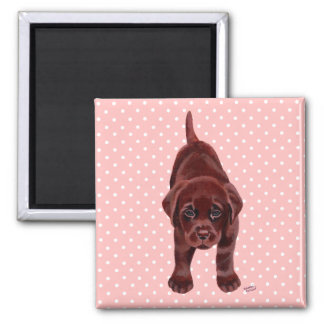 Chocolate Labrador Puppy 2 Inch Square Magnet