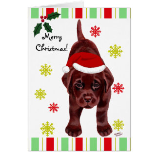 Chocolate Labrador Puppy & Santa Hat Christmas Greeting Cards