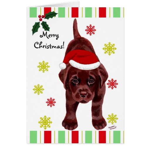 Chocolate Labrador Puppy & Santa Hat Christmas Card