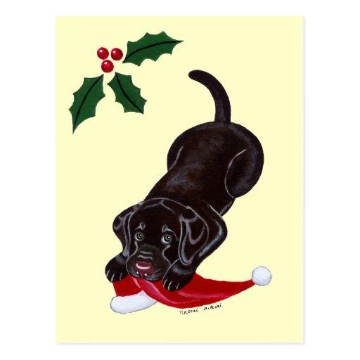 Chocolate Labrador Puppy & Santa Hat Christmas Post Cards