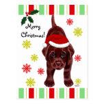 Chocolate Labrador Puppy & Santa Hat Christmas Postcard