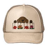 Chocolate Labrador que le mira Gorra