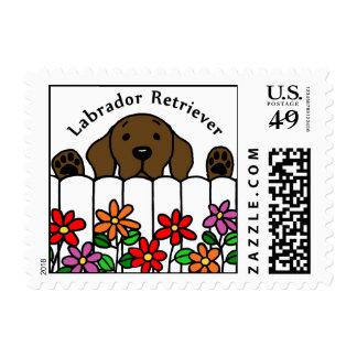 Chocolate Labrador que le mira Sellos