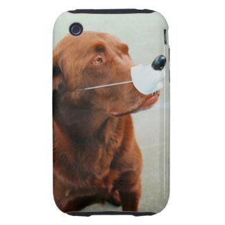 Chocolate Labrador que lleva una nariz falsa iPhone 3 Tough Carcasas