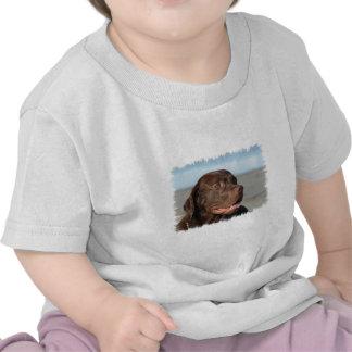 Chocolate Labrador Retriever Baby T-Shirt