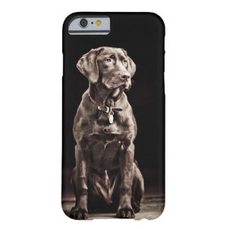 Chocolate Labrador Retriever Barely There iPhone 6 Case
