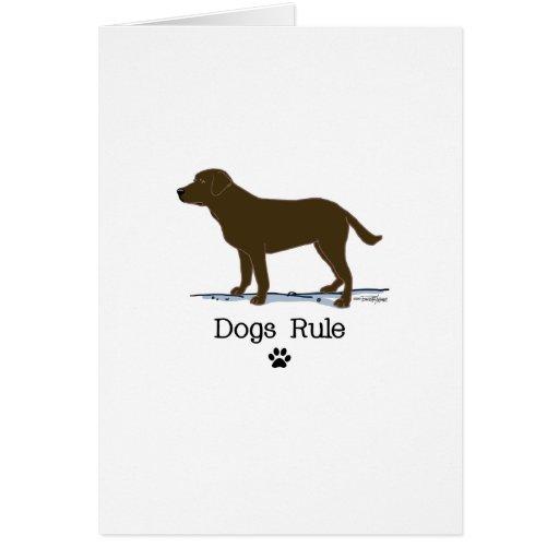 Chocolate Labrador Retriever Cards