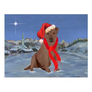 Chocolate Labrador Retriever Christmas Postcard