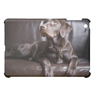 Chocolate Labrador Retriever Cover For The iPad Mini
