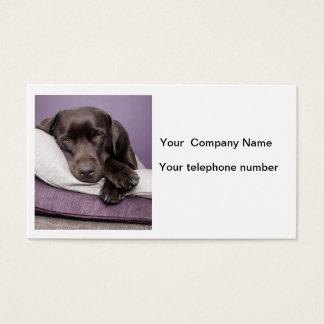 Chocolate labrador retriever custom business card