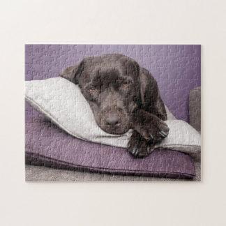 Chocolate labrador retriever dog sleepy on pillows jigsaw puzzle