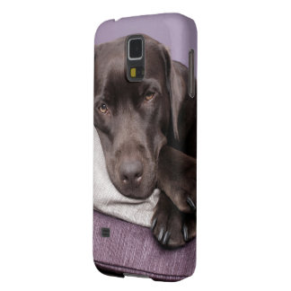 Chocolate labrador retriever dog tired on pillows galaxy s5 cover