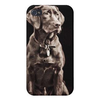 Chocolate Labrador Retriever Case For iPhone 4