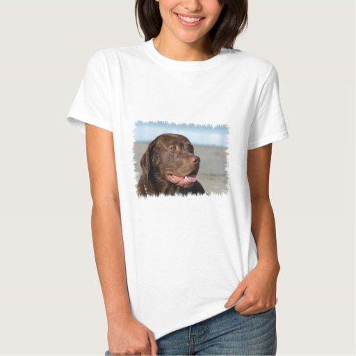 Chocolate Labrador Retriever Ladies Shirt